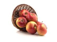 Μήλα που ανατρέπονται από το καλάθι Στοκ Εικόνες