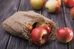 Μήλα που διασκορπίζονται ώριμα στον πίνακα Στοκ φωτογραφία με δικαίωμα ελεύθερης χρήσης