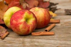 Μήλα, ραβδιά κανέλας και φύλλα πτώσης Στοκ φωτογραφία με δικαίωμα ελεύθερης χρήσης