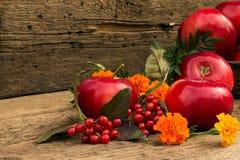 Μήλα σε ένα θολωμένο υπόβαθρο Στοκ Εικόνες