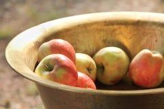 Μήλα σε ένα κύπελλο Στοκ Φωτογραφίες