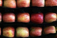 Μήλα σε μια υπεραγορά Στοκ Φωτογραφίες