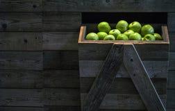 Μήλα στην αγορά Στοκ εικόνα με δικαίωμα ελεύθερης χρήσης