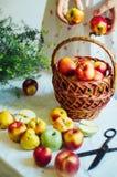 Μήλα στον άσπρο πίνακα Γλυκά μήλα στον πίνακα στο φωτεινό backgrou Στοκ Εικόνα