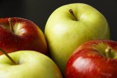 μήλα τέσσερα Στοκ Εικόνα