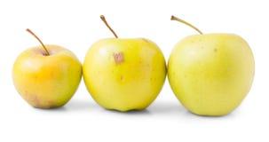 μήλα τρία κίτρινα Στοκ εικόνα με δικαίωμα ελεύθερης χρήσης