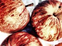 μήλα τρία Στοκ Εικόνα