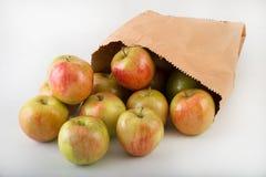 μήλα φρέσκα Στοκ Εικόνα