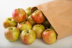 μήλα φρέσκα Στοκ εικόνα με δικαίωμα ελεύθερης χρήσης