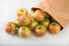 μήλα φρέσκα Στοκ φωτογραφίες με δικαίωμα ελεύθερης χρήσης