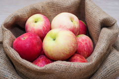 μήλα ώριμα Στοκ Φωτογραφία