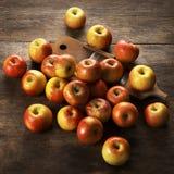 Μήλα Topaz και ξύλινος ξύστης Στοκ Εικόνες