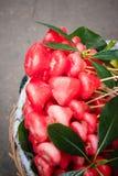 Μήλο κεριών Στοκ Εικόνες