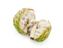 Μήλο κρέμας Στοκ Εικόνες
