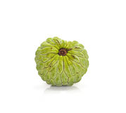 Μήλο κρέμας (squamosa Annona) Στοκ φωτογραφία με δικαίωμα ελεύθερης χρήσης