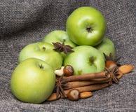 Μήλο με την κανέλα Στοκ Εικόνες