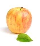 Μήλο με το φύλλο Στοκ Εικόνες