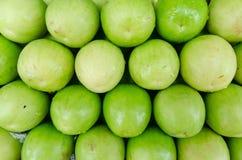 Μήλο πιθήκων Στοκ Εικόνες