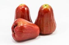 Μήλο που απομονώθηκε στο άσπρο υπόβαθρο Στοκ εικόνες με δικαίωμα ελεύθερης χρήσης