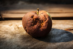 μήλο σάπιο Στοκ εικόνα με δικαίωμα ελεύθερης χρήσης