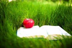 Μήλο στο βιβλίο Στοκ Φωτογραφία