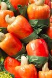 Μήλο των δυτικών ανακαρδίων στοκ φωτογραφίες με δικαίωμα ελεύθερης χρήσης