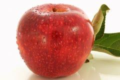 Μήλο φρούτων Στοκ Φωτογραφία