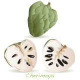Μήλων ή cherimoya κρέμας διάνυσμα Στοκ εικόνες με δικαίωμα ελεύθερης χρήσης