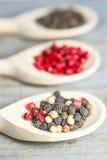Μίγμα πιπεριών Στοκ εικόνα με δικαίωμα ελεύθερης χρήσης