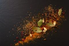 Μίγμα των αρωματικών καρυκευμάτων: μαύρο πιπέρι, κάρρυ, καρδάμωμο, barberry, Στοκ εικόνα με δικαίωμα ελεύθερης χρήσης