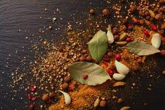 Μίγμα των αρωματικών καρυκευμάτων: μαύρο πιπέρι, κάρρυ, καρδάμωμο, barberry, Στοκ εικόνες με δικαίωμα ελεύθερης χρήσης