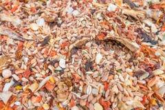 Μίγμα των διάφορων δημητριακών με την προσθήκη των ξηρών λαχανικών και στοκ εικόνα