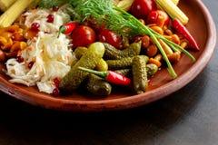 Μίγμα των διαφορετικών πρόχειρων φαγητών και του ορεκτικού Μαριναρισμένα φαγητό-3 Στοκ Εικόνες