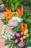 Μίγμα φρέσκων λαχανικών. Στοκ Εικόνες