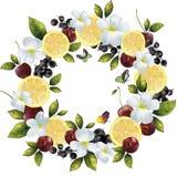 Μίγμα φρούτων εμβλημάτων σε έναν κύκλο Στοκ φωτογραφία με δικαίωμα ελεύθερης χρήσης