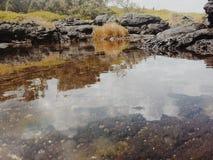 μίνι λίμνη στοκ φωτογραφία