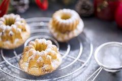 Μίνι κέικ κερασιών Bundt που ψεκάζονται με την κονιοποιημένη ζάχαρη Στοκ Εικόνα