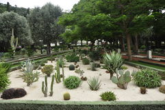 Μίνι κήπος κάκτων μέσα Στοκ φωτογραφίες με δικαίωμα ελεύθερης χρήσης
