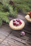 Μίνι πίτα με τα τα βακκίνια Στοκ φωτογραφίες με δικαίωμα ελεύθερης χρήσης