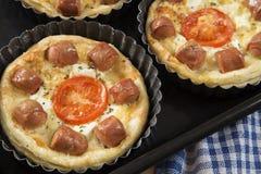 Μίνι πίτσες στοκ εικόνες με δικαίωμα ελεύθερης χρήσης
