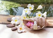 Μίνι σύνολο λουτρού φυσαλίδων και πηκτώματος ντους που διακοσμούνται στη θάλασσα conch SH Στοκ Εικόνα