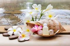 Μίνι σύνολο λουτρού φυσαλίδων και πηκτώματος ντους που διακοσμούνται στη θάλασσα conch SH Στοκ φωτογραφίες με δικαίωμα ελεύθερης χρήσης