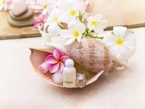 Μίνι σύνολο λουτρού φυσαλίδων και πηκτώματος ντους στο κοχύλι θάλασσας conch Στοκ Φωτογραφίες