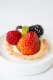 Μίνι φρούτα ξινά Στοκ φωτογραφίες με δικαίωμα ελεύθερης χρήσης