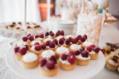Μίνι Tarts φρούτων Στοκ φωτογραφίες με δικαίωμα ελεύθερης χρήσης