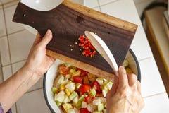 μίξη της σαλάτας Στοκ Εικόνες