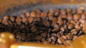 Μίξη των ψημένων φασολιών καφέ απόθεμα βίντεο