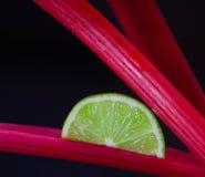 Μίσχοι φετών και ρεβεντιού ασβέστη στοκ φωτογραφία