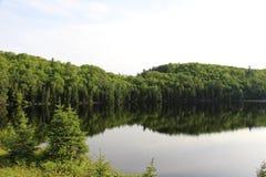 Μίλια και μίλια της αγριότητας Στοκ εικόνα με δικαίωμα ελεύθερης χρήσης