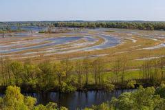 Μαίανδρος στον ποταμό Desna Πλημμύρα Φυσικό τοπίο λιβαδιών Ουκρανία στοκ εικόνα